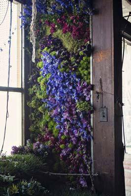 abandoned-flower-house-detroit-lisa-waud-honargardi (2)