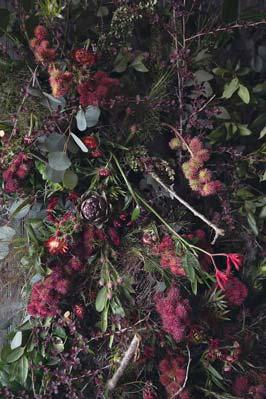 abandoned-flower-house-detroit-lisa-waud-honargardi (4)