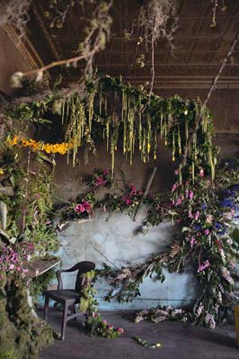 abandoned-flower-house-detroit-lisa-waud-honargardi (5)