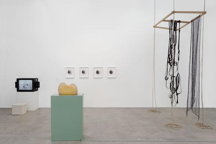 گالری ماریان گودمن