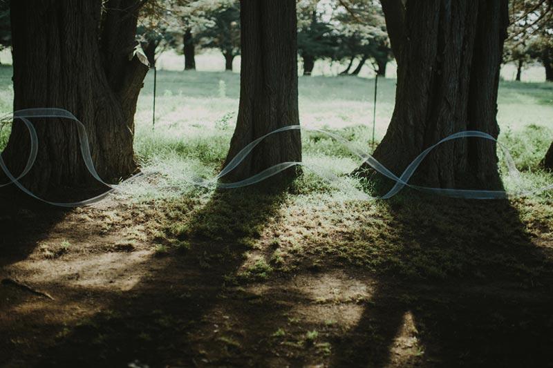 اثر بنجامین شاین برای عروسی خودش