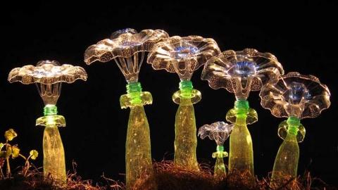 بطری های ورونیکا ریشتر