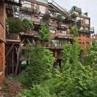 urban-treehouse-architecture-25-verde-luciano-pia-honargardi-(11)