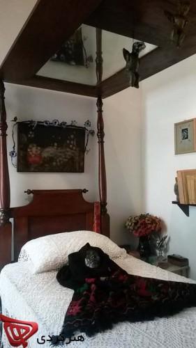 Casa-Azul_Frida-Kahlo_mina-mokhtarian_honargardi_artevents_2015_mexico (25)