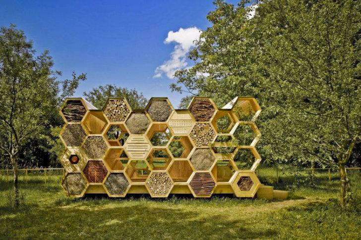 هتلی برای زنبورها و سایبانی برای انسان ها