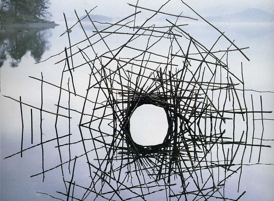 هنر محیطی اندی گلدزورتی