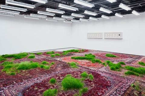مارتین راث و چیدمان سبز او بر فرش رنگین ایرانی
