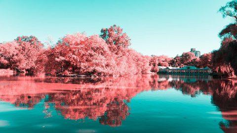 عکاسی مادون قرمز توسط هنرمند ایتالیایی Paolo Pettigiani